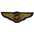 Pilot Patches